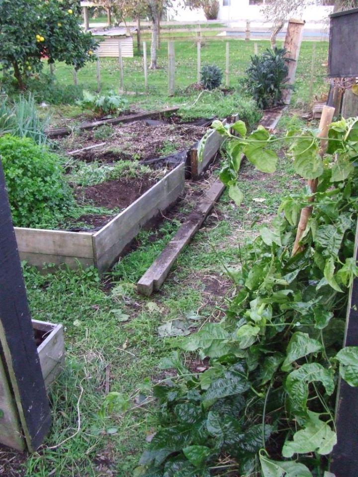 The vege garden dismantling
