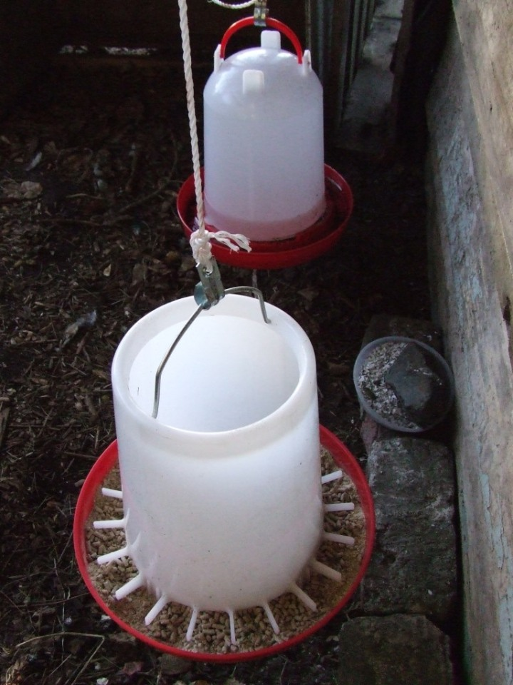 Chicken feeder and waterer