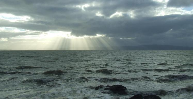 Sun rays over sea