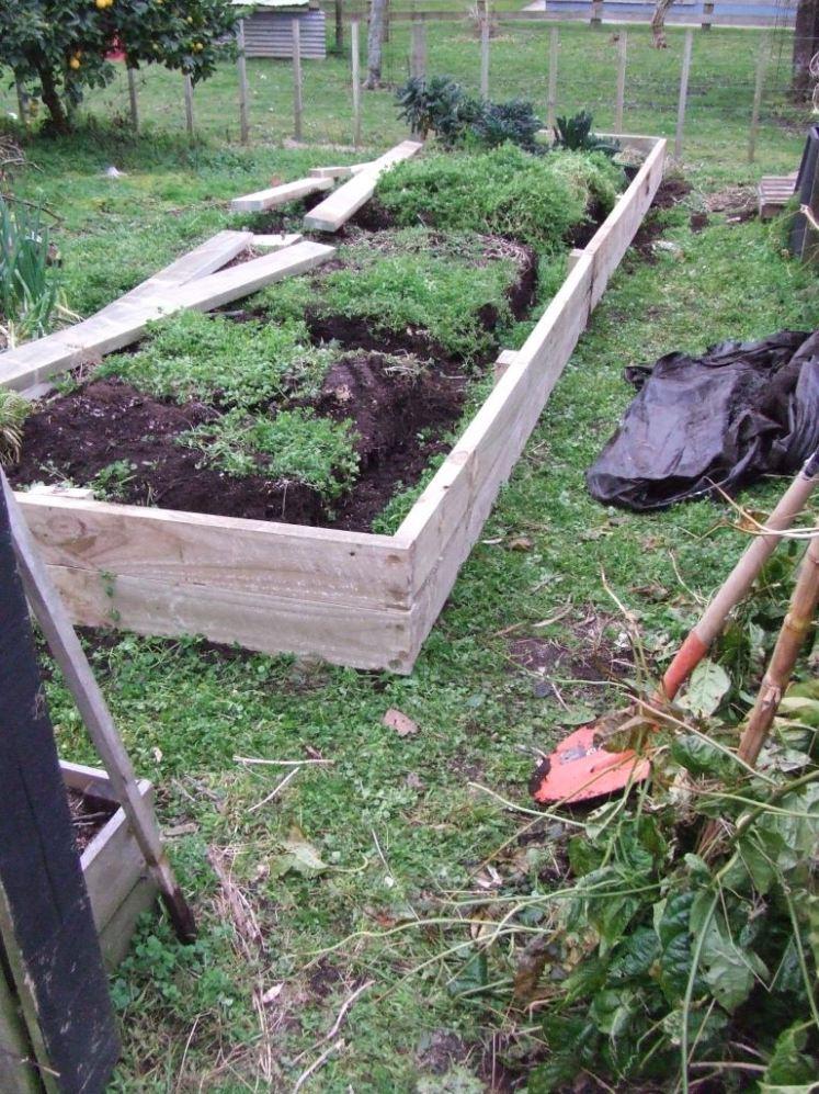 Vege bed 3 sides