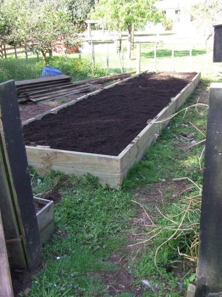 The vege bed composted