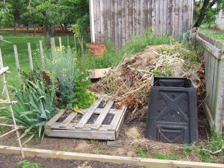 The compost area