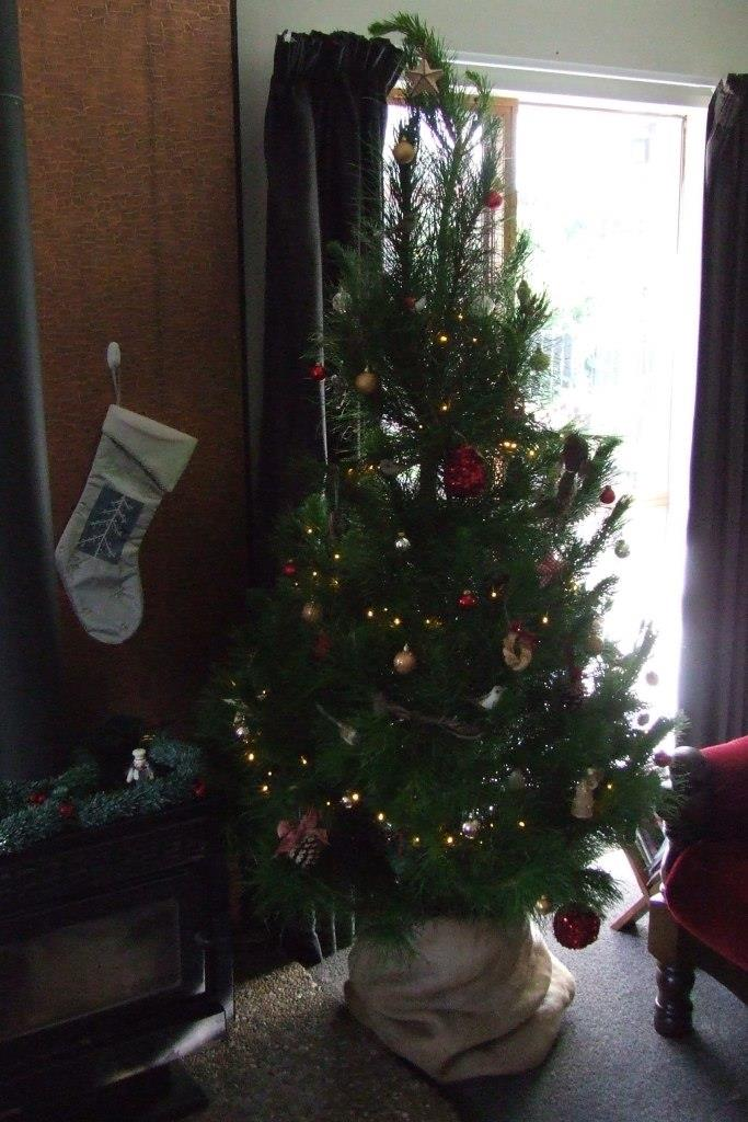 Christmas tree decorated 2