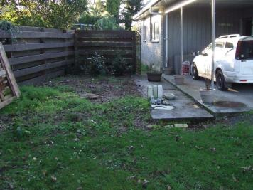 The weird area beside the carport before. More stumps and weeds.