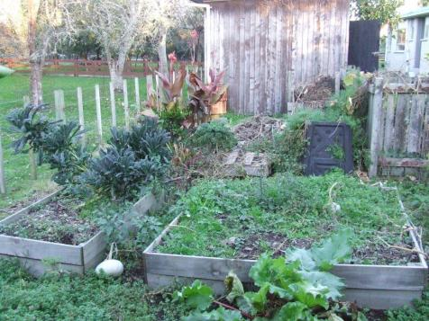 Compost Corner and the old vege beds, not long after we moved into the house. So much work...