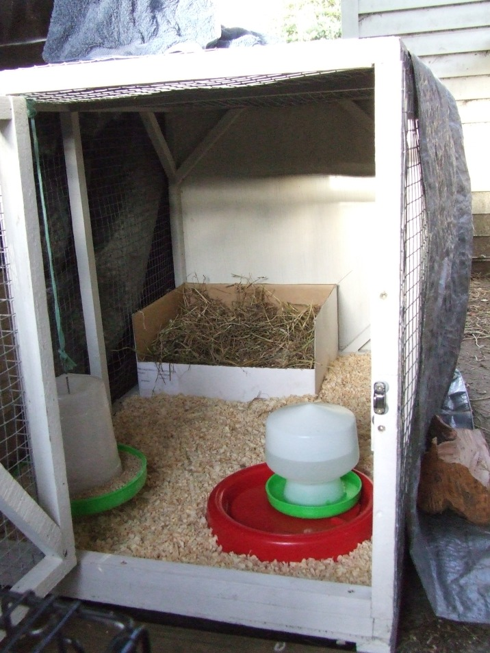 The Hospital Cage was turned into the Maternity Cage, awaiting some occupants.