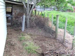 Before, the plastic netting ran along the garage side of the grass, leaving the chickens a narrow path, and The Sticks went from the the woodshed to the edge of the stick pile in the foreground. Oops!