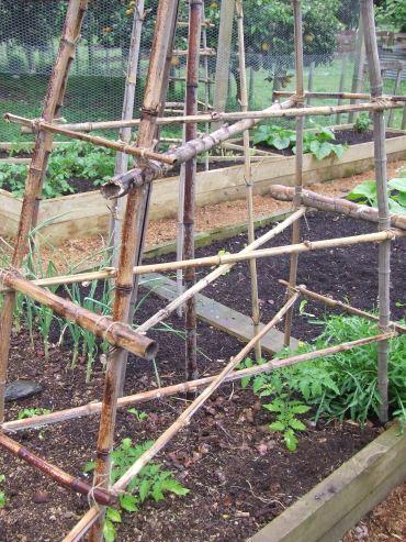 The prototype double criss-cross bamboo tee-pee.