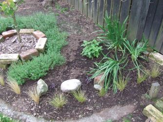 I rearranged the chives. Originally I was going to have some common chives and garlic chives at each corner, but decided to have just garlic chives at this end and common chives at the other, mostly because I have planted a red-flowering bee balm (Monarda) here, which wouldn't have looked great with pink-purple common chives flowers and also because it will just look better to keep them separate: three chives clumps at each end.