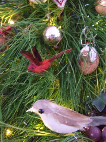 I'm not the only one who loves my little Christmas tree birds. The Little Fulla now shares my fascination.