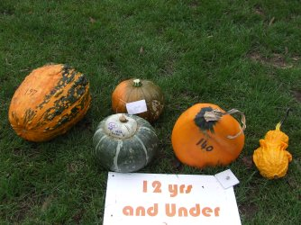 Pumpkins came in all shapes, sizes and creative outbursts.