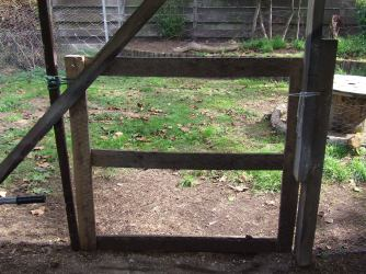 The gate is a bit temporary because the carport is going to come down at some point. I want the lower support posts to stay, so everything is only stapled to them.