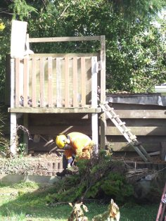 The old fort and the remnants of an old sandpit can be seen here, as The Husband cuts up the first tall conifer that he felled.