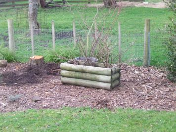 These three blackcurrant bushes just needed to go...