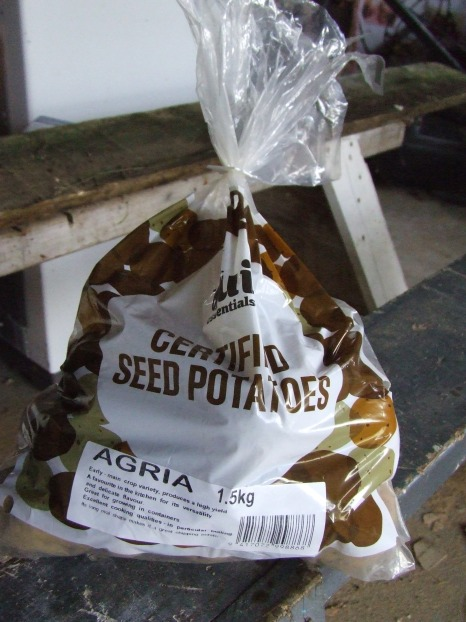 I now have all my seed potatoes. More than all my seed potatoes...