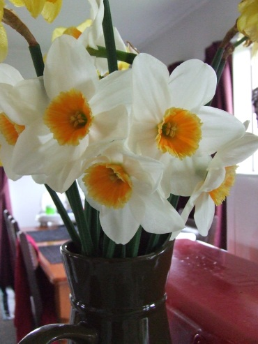 Daffodils in the vase.