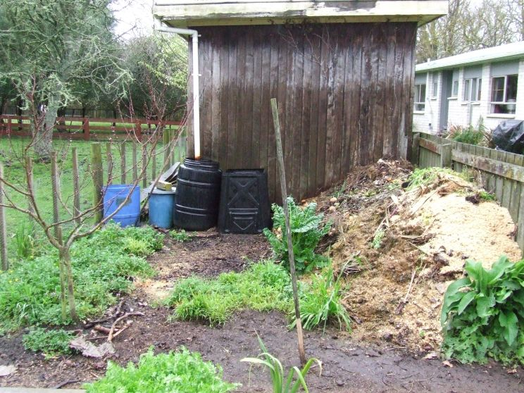 The potato barrels will a be a bit more out of the way in the compost area this year.