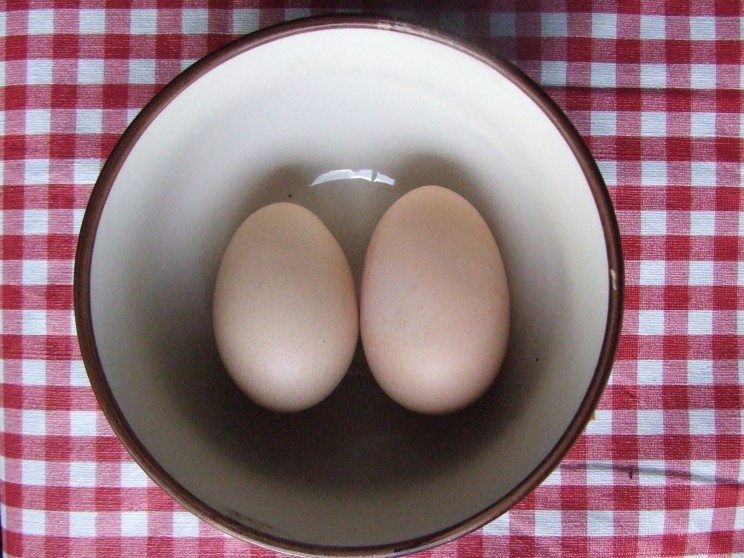 A jumbo Lizzie egg (left) and Jane's jumbo egg (right).