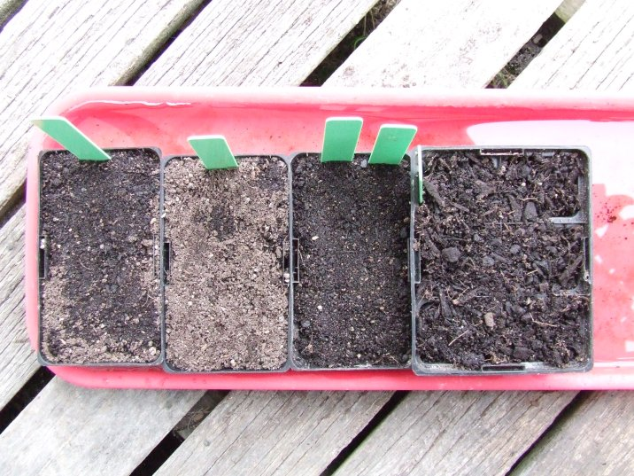 At least I've been getting lots of seed-sowing done.