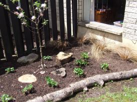 I was originally going to have this garden as an ornamental bed, but you've gotta put edibles wherever you can.