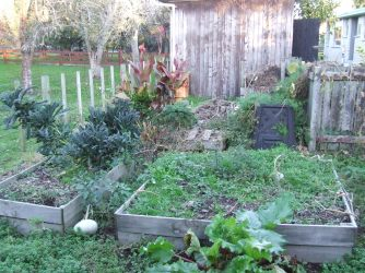 Looking into the compost area.