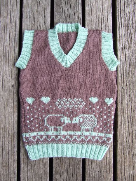 The Mother-in-law knitted this cute sheep vest for The Little Fulla.