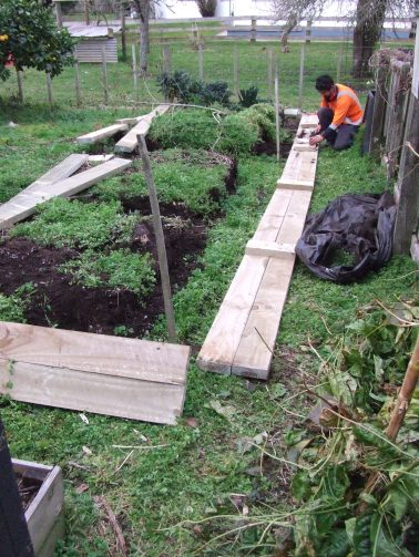 Scrapping the old vege beds in favour of the first long bed.