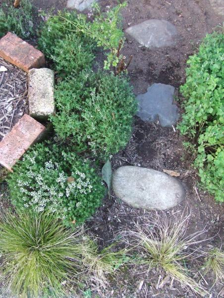 I enjoyed laying stepping stones and clipping herbs into pleasing balls.