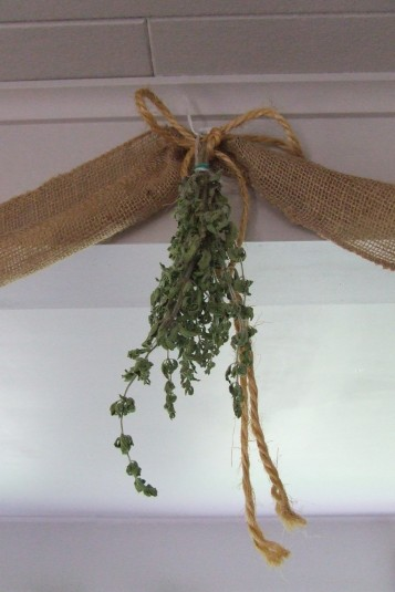 Oregano drying out.