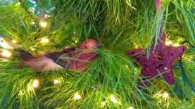 Always with the birds! I know they don't have anything to do with the Christmas story, but they make the tree whimsical and interesting.