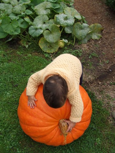The giant pumpkin was fun for all of us. Everyone should have one or two of these lying about.