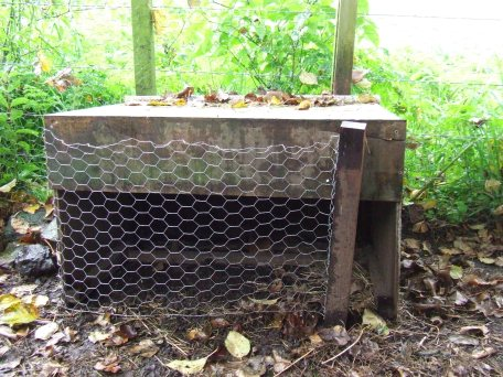 The chick feedbox.