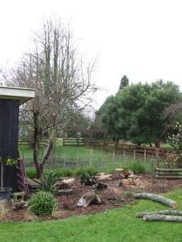 The Plum Tree Garden had a useless plum tree felled.