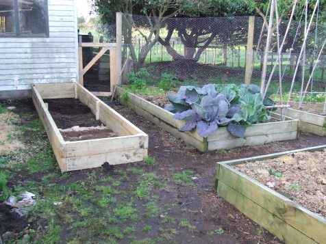 A new raised bed was built in the Vege Garden.