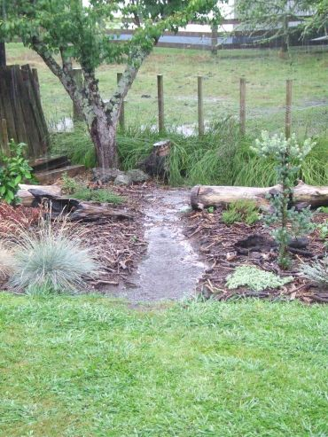 The Plum Tree Garden path turned into a stream once again.
