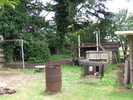 Setting up the second chicken pen, the Cedar Pen, involved pruning, stump removal, tree removal, invasive weed control, fort repurposing and fencing. When this photo was taken the fort sides had been demoed and some ivy and other weeds had been cleared from the raised level.