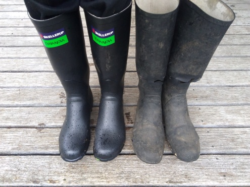 Gumboots: In with the new and out with the old. Sooo old. Rips across the front and rips in the toes. Those old things had some water tightness issues. Among other issues. They had almost been decapitated.