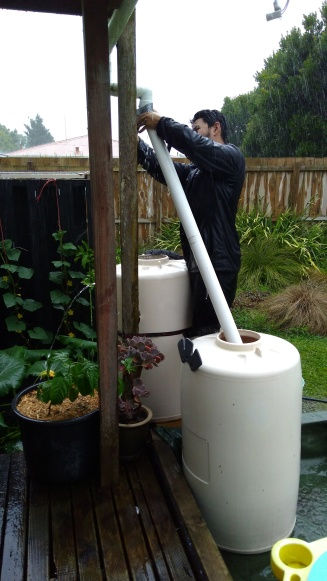 The Husband joined in with the rain crazies, shifting barrels and downpipes as they started to overflow.