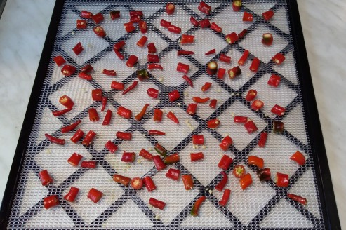Cayenne chillies chopped up for drying in the dehydrator.
