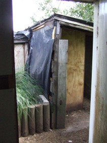 A 'before' photo from the garage side door. The chicken coop I built is under the roof on the right.