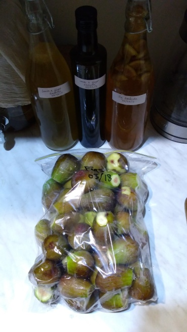 Freezing figs for later use. And experimenting with kombucha flavours in the background.