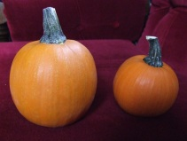 My selections for Most Perfect Pumpkin. The chosen, 2nd place one is the one on the left.