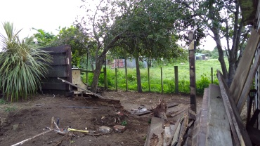 The apple tree before, in the middle of the Demo Project.
