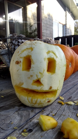 At my prompting, The Husband and The Little Fulla had great fun carving out and playing with this immature Crown pumpkin. It didn't make it to the carnival, for some reason, but it was all part of the pumpkin experience.