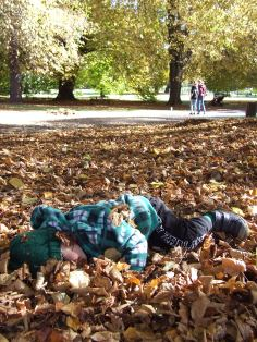We almost lost The Little Fulla in the leaves after a leaf fight.