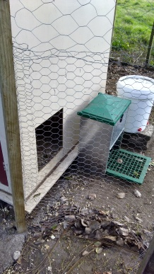 This flexible gate is an odd size but can be moved backwards to the other side of the pophole when I want the chickens in the Cedar Pen. I just have to relocate the feeder and waterer. Or have separate ones.