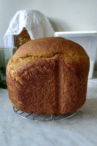 That's much better - a nice loaf of pumpkin yeast bread.