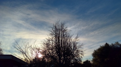 This morning dawned crisp and sunny - music to my soul.