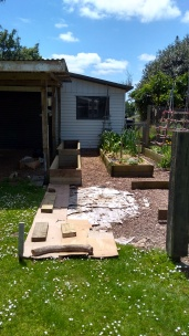 Using cardboard to cover the grass and mark out the future development zone.