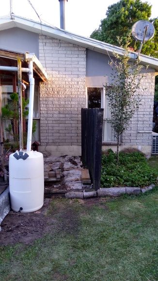 The rain barrel is looking clean and ready for a new stand. Soon.